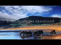 Running on the Grassland